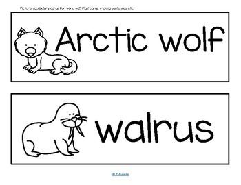 Arctic Animals Informative Reader plus Puppets, Vocabulary