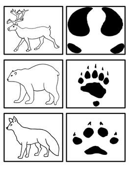 arctic animals footprint matching activity by preschool everyday. Black Bedroom Furniture Sets. Home Design Ideas