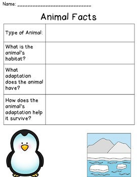 Arctic Animals (Habitats and Adaptations)