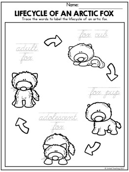 Arctic Animals Handwriting Lessons (Cursive Edition)