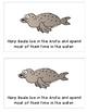 Arctic Animals: Harp Seal Emergent Reader and K-W-L Chart