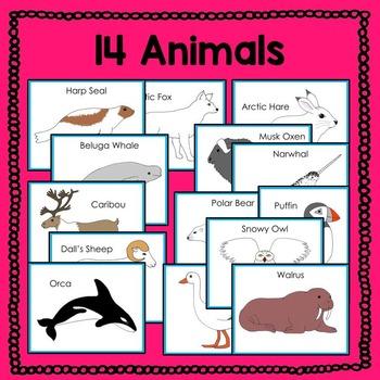 Arctic Animal Fun Fact Cards (informational text)
