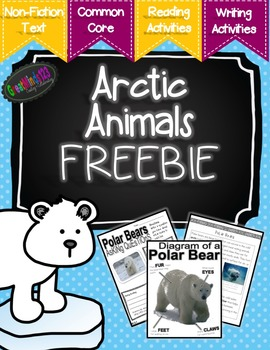 Arctic Animals Informational Text - Free
