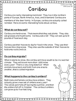 Arctic Animals Informational Texts: Main Idea, Comprehension Questions, Facts
