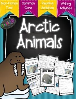 Arctic Animals Informational Unit