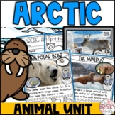 Arctic Animals Unit for Kindergarten   Arctic Animals Preschool