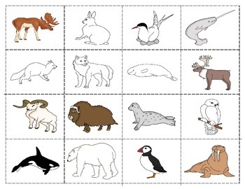 Arctic Animals:  Mini Matching Cards