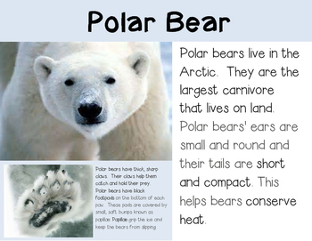 Arctic Animals--Nonfiction Text and Science Journal for K-2