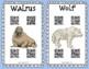 Arctic Animals QR Research Report
