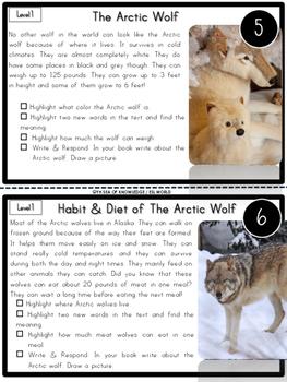 Arctic Animals Nonfiction Reading Passages