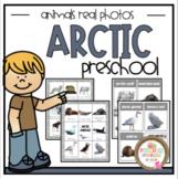Arctic Animals Real Photos