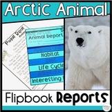 Arctic Animals Research
