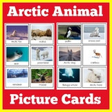 Arctic Animals Science Cards