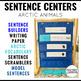 Sentence Building Arctic Animals