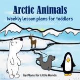 Arctic Animals Toddler Lesson Plan