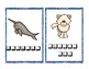 Arctic Animals Typing Practice