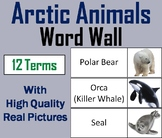 Arctic Animals Word Wall Cards