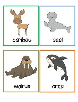 Polar Animals Write the Room