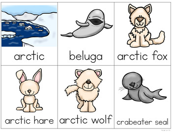 Arctic Animals Writing Center