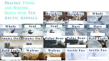 Arctic Animals- a Typing or Writing Practice Activity