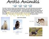 Arctic Animals of the Tundra