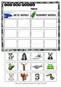 Arctic Animals vs Rainforest Animals | Category Sort | Cut and Paste Worksheets
