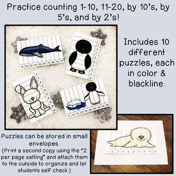 Arctic & Antarctic Animal Skip Counting Picture Puzzle Set