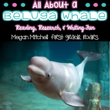 Arctic Beluga Whale-Informational Text Reading, Writing, &