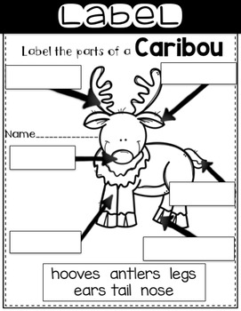 Arctic Caribou-Informational Text Reading, Writing, & Research