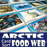 Food Chain and Food Web: Arctic Card Sort