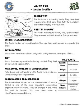 Arctic Fox -- 10 Resources -- Coloring Pages, Reading & Activities