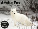 Arctic Fox Reading Passages