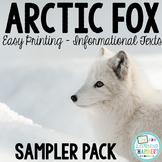 Arctic Fox Informational Text: Main Idea, Comprehension Questions, Facts