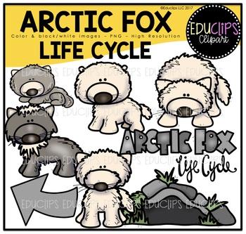Arctic Fox Life Cycle Clip Art Bundle {Educlips Clipart}