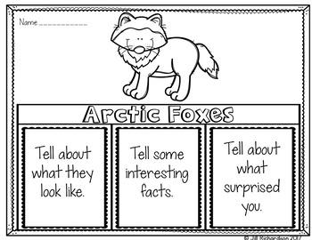 Arctic Fox Writing Flap Books!