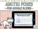 Arctic Foxes for Google Slides