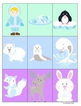 Arctic Regions Polar Animals Thematic Unit