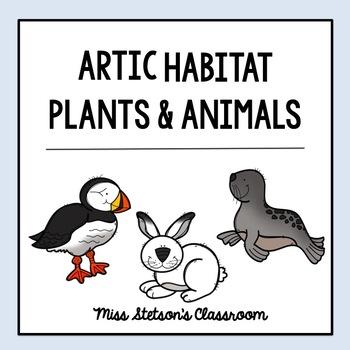 Arctic Habitat  - Plants and Animals