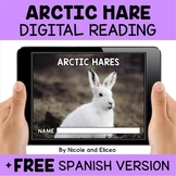 Arctic Hare Reading Comprehension for Google Classroom - D
