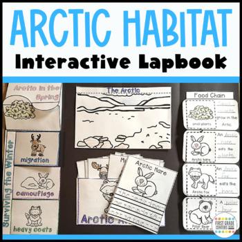 Arctic Interactive Lapbook