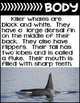 Arctic Killer Whale-Informational Text Reading, Writing, & Research