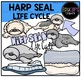 Arctic Life Cycles Clip Art Big Bundle {Educlips Clipart}