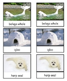 Arctic Montessori 3-part cards--Safari Arctic Toob