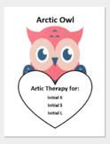 Arctic Owl Artic Worksheet