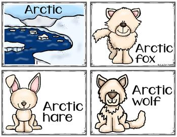 Arctic Polar Animals Write the Room