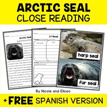 Close Reading Passage - Arctic Seal Activities
