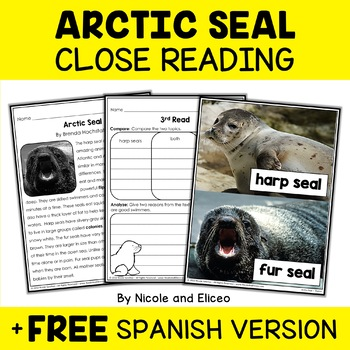 Arctic Seal Close Reading Passage Activities