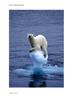Arctic Topic Pack