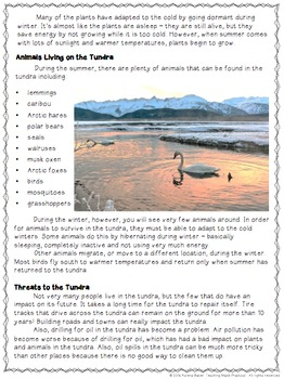 Arctic Tundra Reading Comprehension and Differentiated Questions