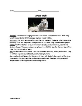 Arctic Wolf - Review Article questions vocabulary writing